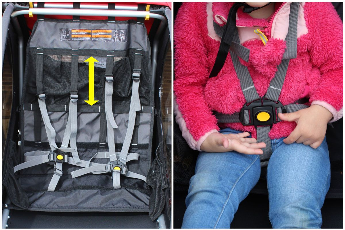 Harness and buckle system on Burley Honey Bee bike trailer. Shoulder straps shift up and down on a continuous slide.
