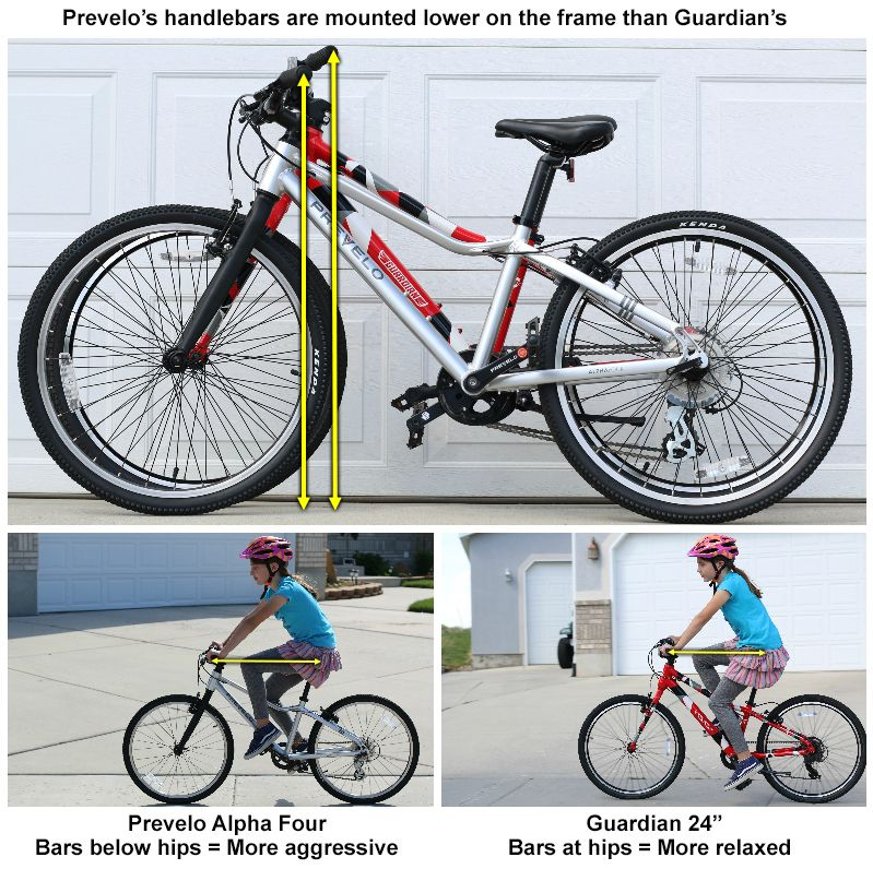 Prevelo's handlebars are mounted lower on the frame than Guardian bikes. With the bars below the hips, the rider must lean forward more which is a more aggressive stance.